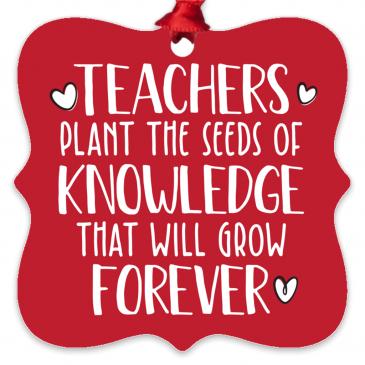Teachers Plant The Seeds Metal Ornament